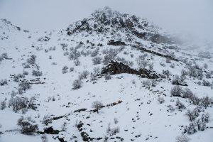 Tawela, Kurdistan, Irak, mars 2019. La traversée de la montagne est périlleuse, d'abord on s'enfonce dans la boue de la pente raide puis la nuit tombée elle gèle et devient glissante. Il faut garder les bêtes sur le chemin. En chemin, on risque de tomber sur les gardes frontières iraniens, ou de marcher sur une mine si on s'écarte du sentier.